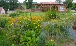 Údržba ukázkové přírodní zahrady v Horní Krupé