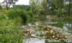 Zpracování návrhu zahradních úprav soukromé zahrady - Lukovany