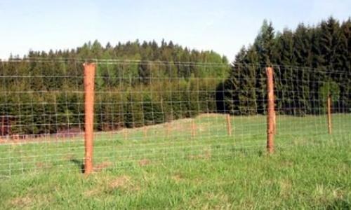 Stavba pastevecké ohrady pro ovce